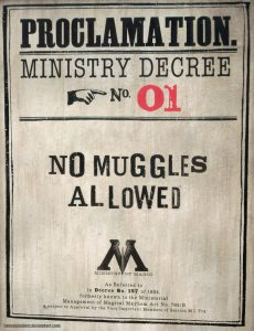 no_muggles_allowed_by_cersseilanner-d3dmq3i