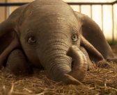 Review: Dumbo