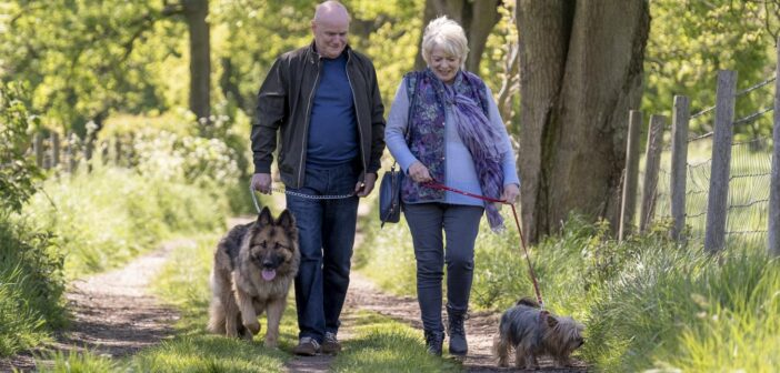 Review: 23 Walks – A Love Story For The Older Generation